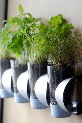 Wall planters with IKEA cup holder