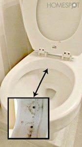How to clean a toilet and keep it clean