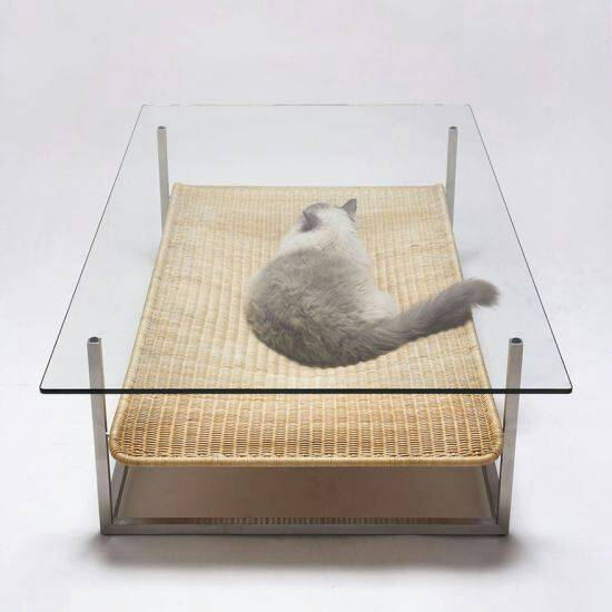 coffee table cat bed