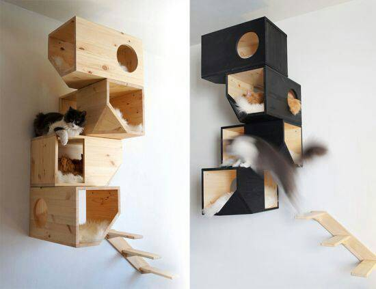 wall cat house