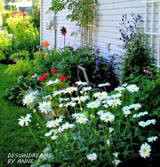 6 Budget Friendly Landscaping Ideas